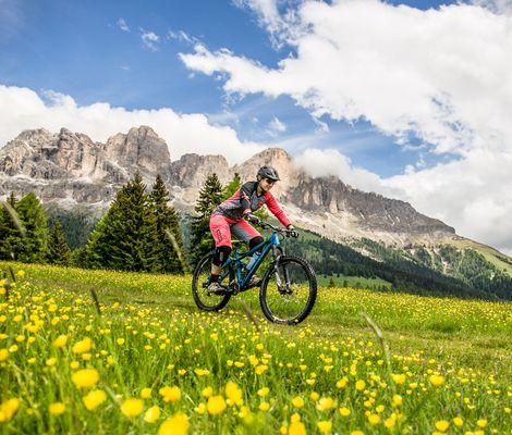 Ladies' cycling week in the Dolomites